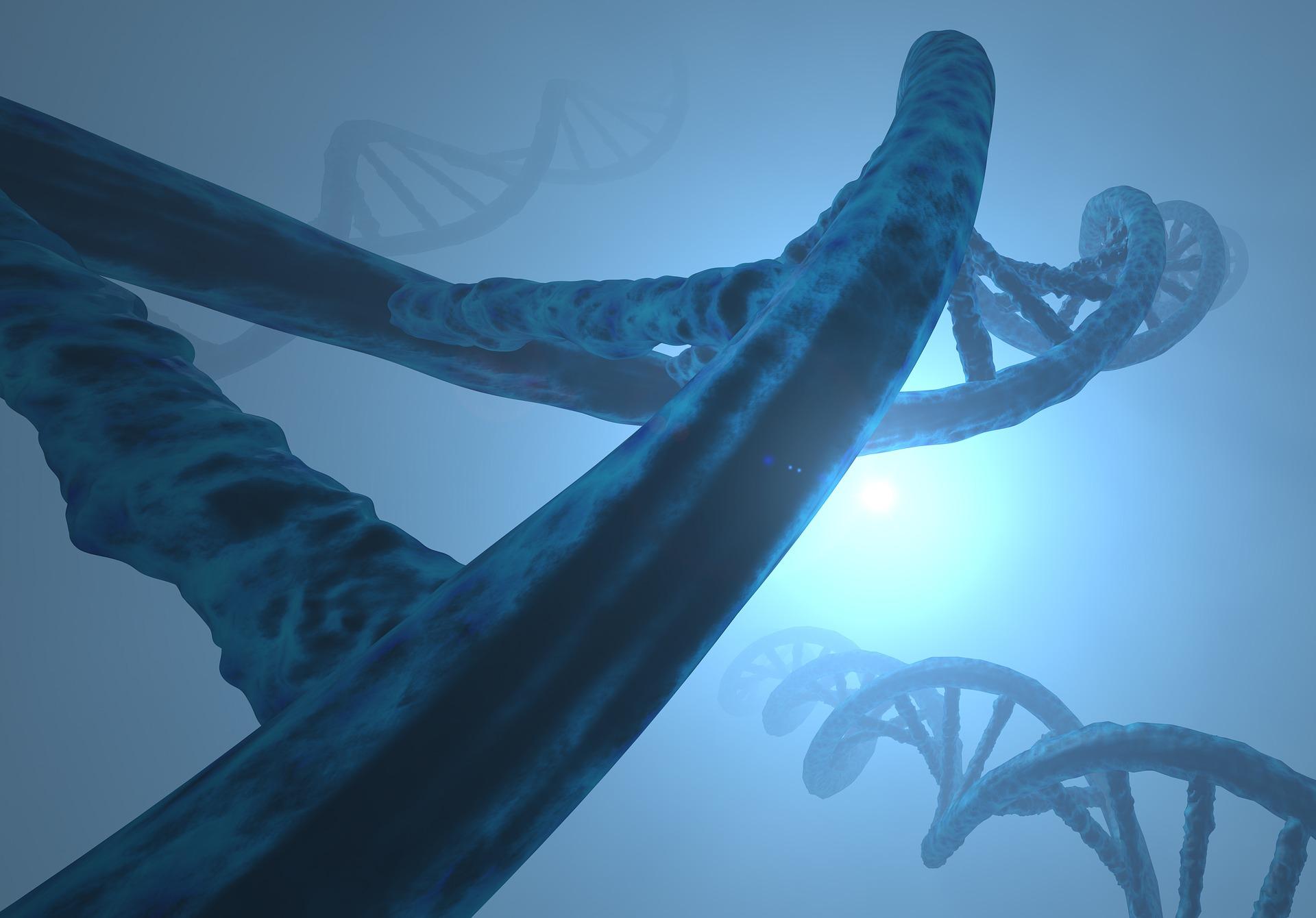 nutrigenomica-nutrigenetica-header